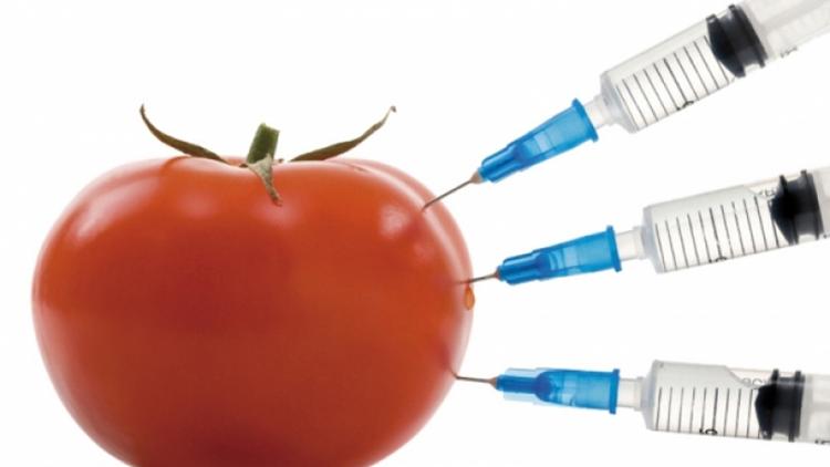 Какво е ГМО