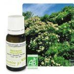 Био етерично масло от чаено дърво