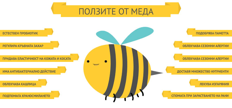 Visusal_Content_Honey_Bee