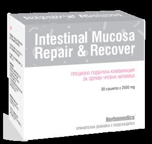 intestinal_mucosa
