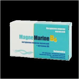 МагнеМарин Б6 / MagneMarine B6