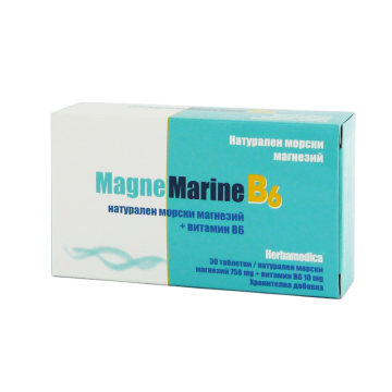 МагнеМарин В6 / MagneMarine B6