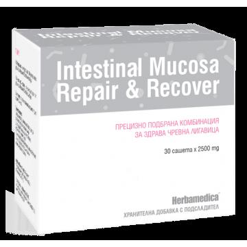Интестинал Мукоза Рипеър енд Рикавър / Intestinal Mucosa Repair & Recover